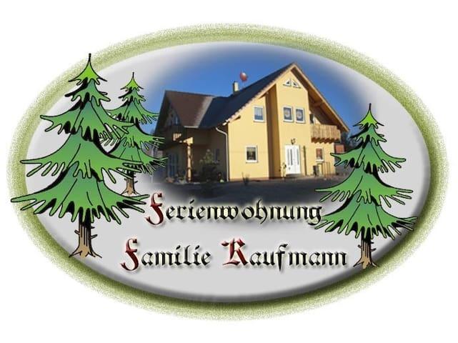 Raschau-Markersbach的民宿