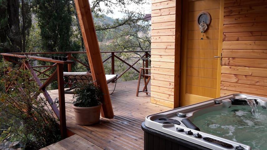 maison avec sauna et jacuzzi au bord de la rivière