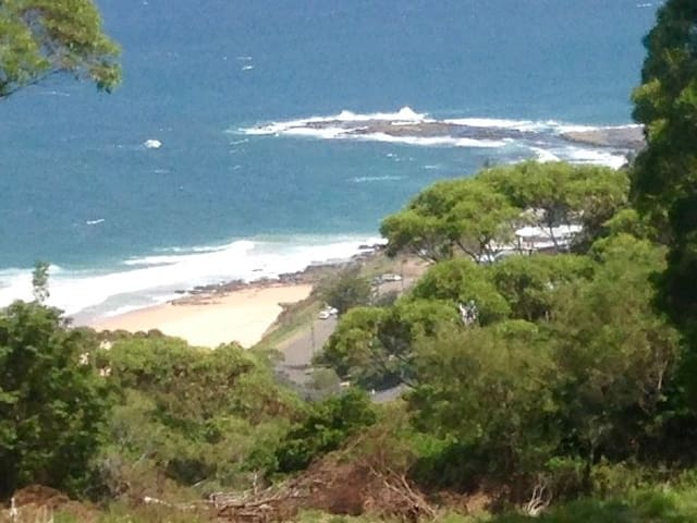 """Wombarra  Glamping  """"rainforest by the sea""""1"""