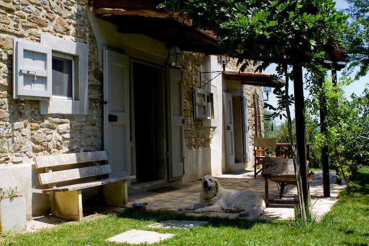 Lippiano的民宿
