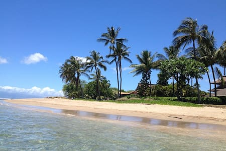 Baby Beach Bliss