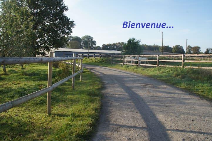 Montigny-en-Cambrésis的民宿