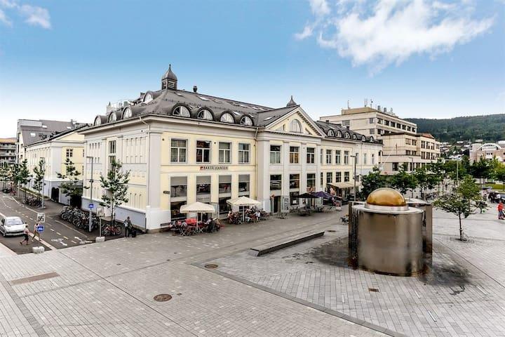 德拉门(Drammen)的民宿