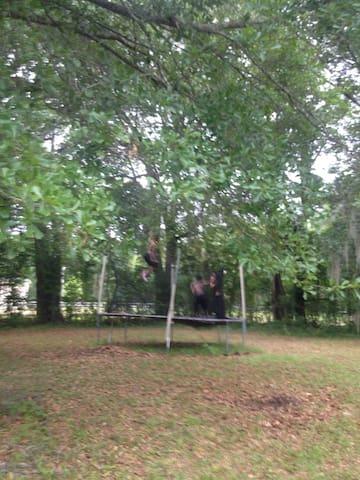 Rainbolt camping utopia