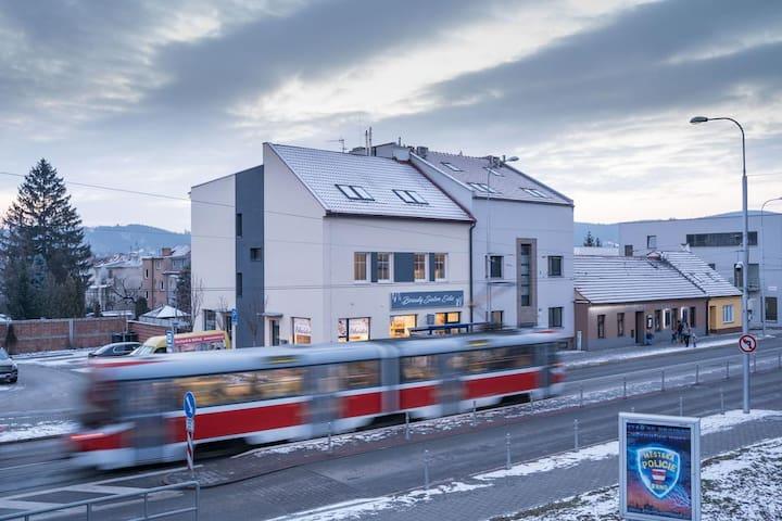 Brno-Žabovřesky的民宿