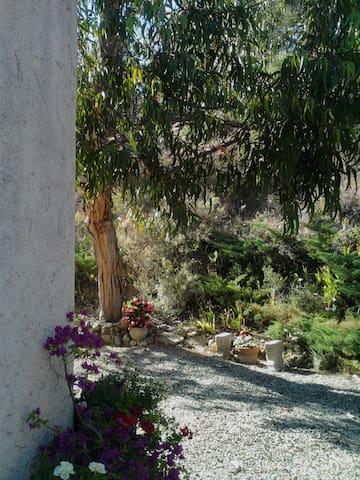 Bize-Minervois的民宿