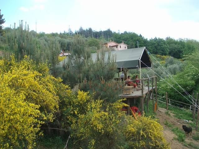 Uzzano的民宿