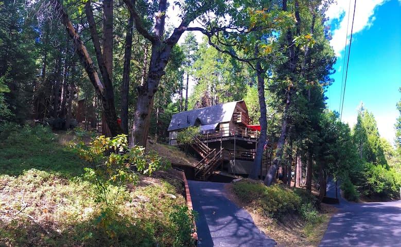 Knotty Retreat: Pinecrest Lake/ Ski Dodge *WIFI*