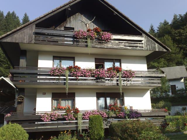 Bohinjska Bela的民宿