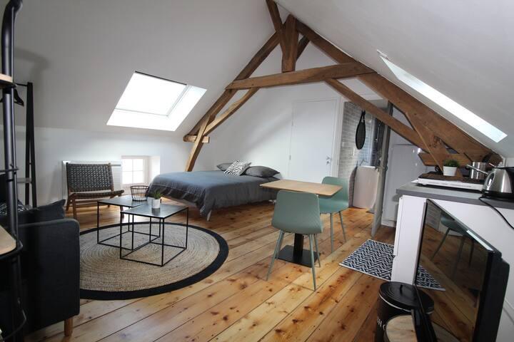 Loft, hyper-centre La Roche sur Yon