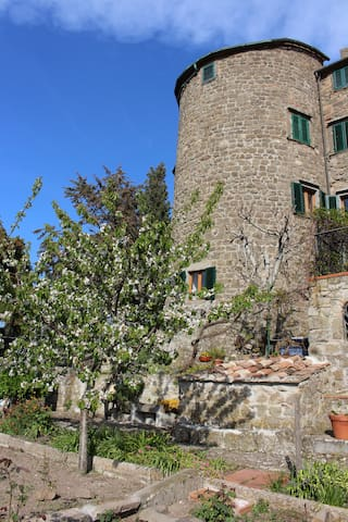 Montecatini Val di Cecina的民宿