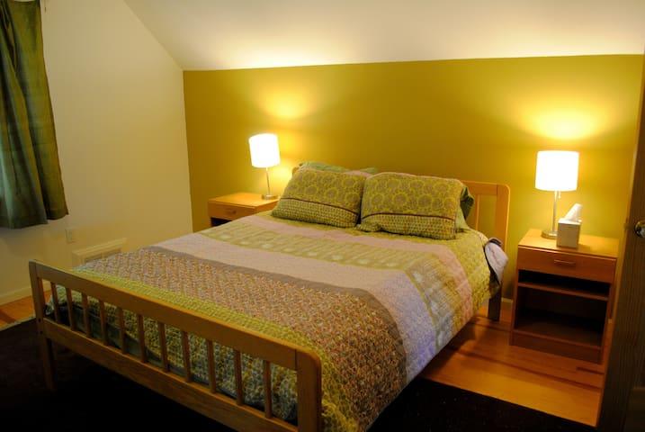 ann arbor spacious room near downtown