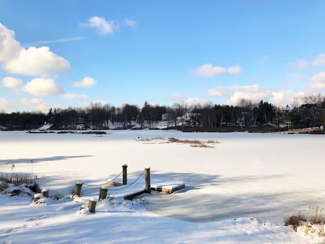 Long pond的民宿