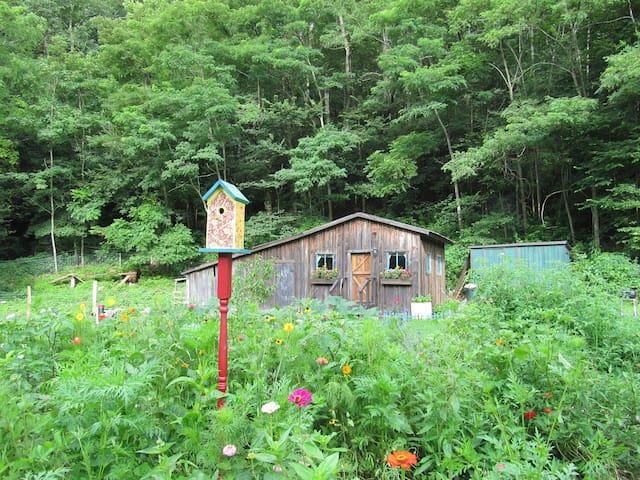 Renovated Barn in Seneca Rocks