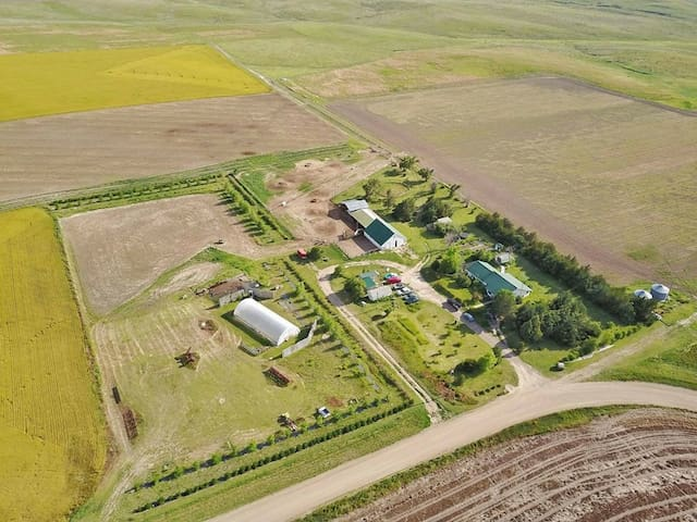 Cozy and Charming Farm House nestled in NW Kansas