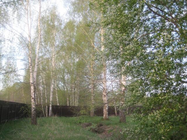 Деревня Уланово的民宿