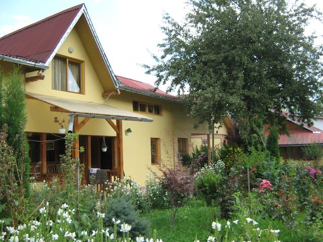 Campulung Moldovenesc的民宿