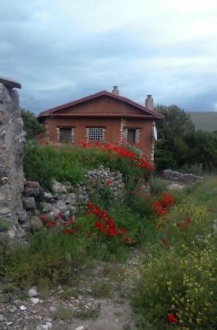 Torremocha de Jadraque的民宿