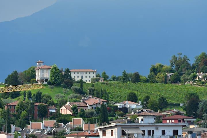 Conegliano的民宿