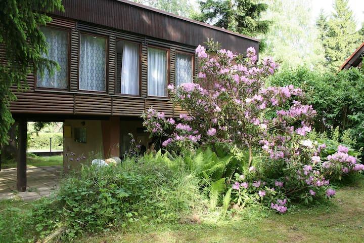 Krucemburk的民宿