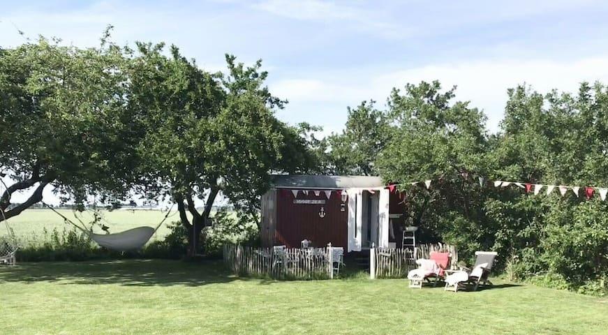 Kronprinzenkoog的民宿
