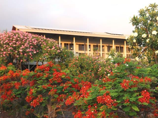 威美亚(Waimea)的民宿