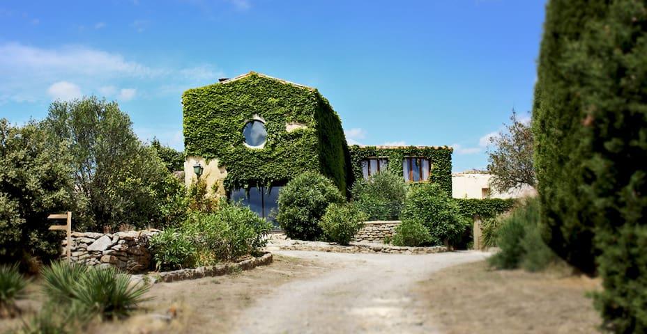 Laure-Minervois的民宿