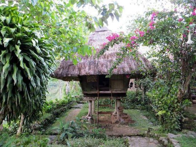 Banaue的民宿