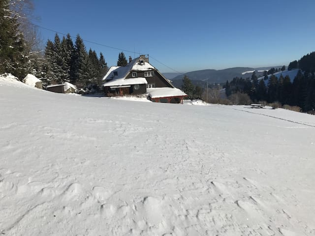 Feldberg (Schwarzwald)的民宿