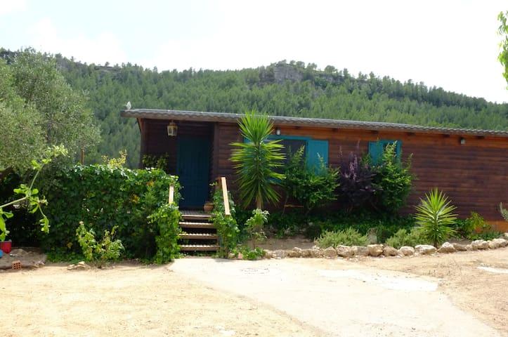 Mont-roig del Camp的民宿