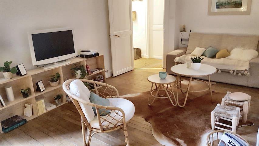 Appartement cosy face au passage pommeraye
