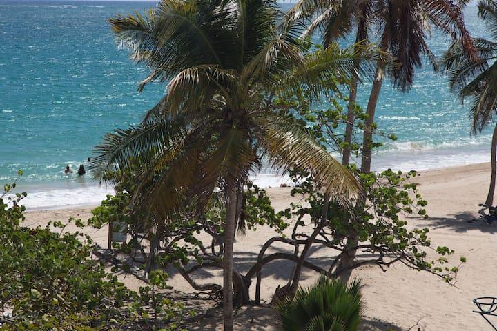 Stunning Ocean View Studio : Steps to the Beach