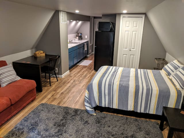 Newly remodeled studio apt close to it all