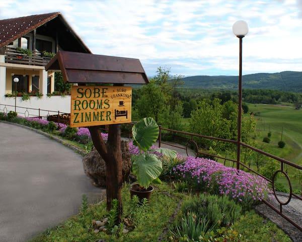 Vinica的民宿
