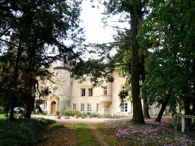 Saint-Haon-le-Vieux的民宿