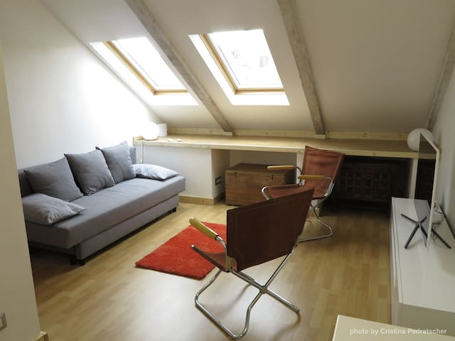 Modern apartment, Turin center