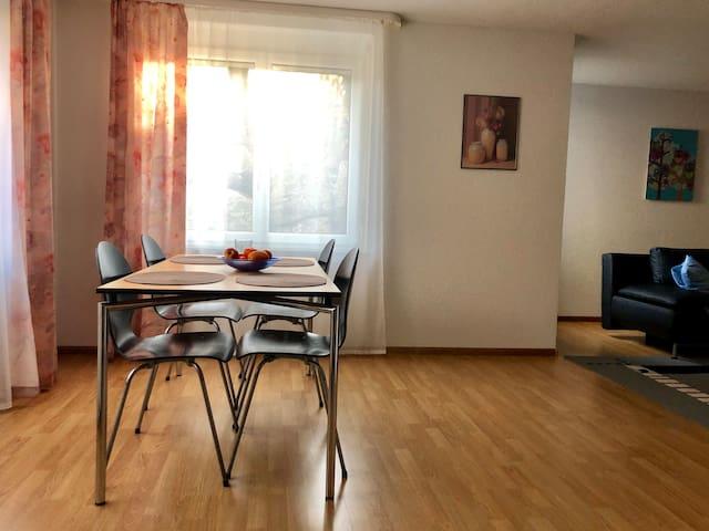 Bad Säckingen的民宿