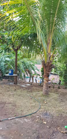 Comunidad Juan Ponce的民宿