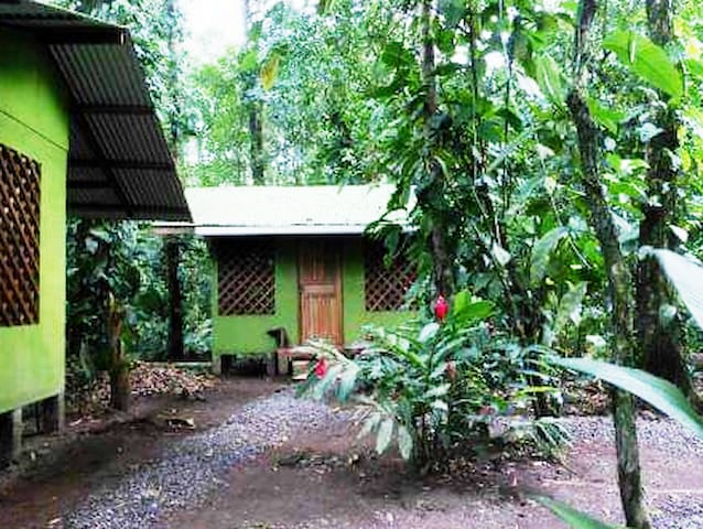 Toucan and Tarpon Lodge