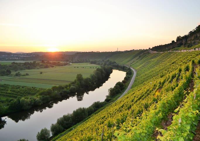 Der Weinblick - Ihre Ferienwohnung in Besigheim