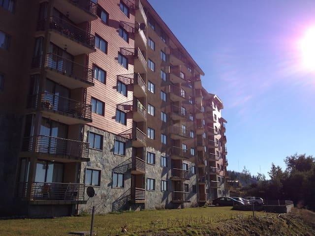 Villarica的民宿