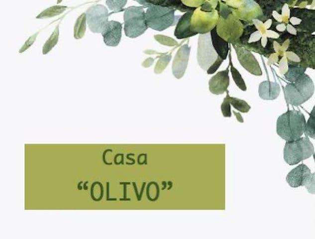 Casa Olivo Cómoda y acogedora con alberca y asador