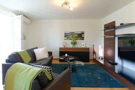 Charming 3Room Apartment Basel City