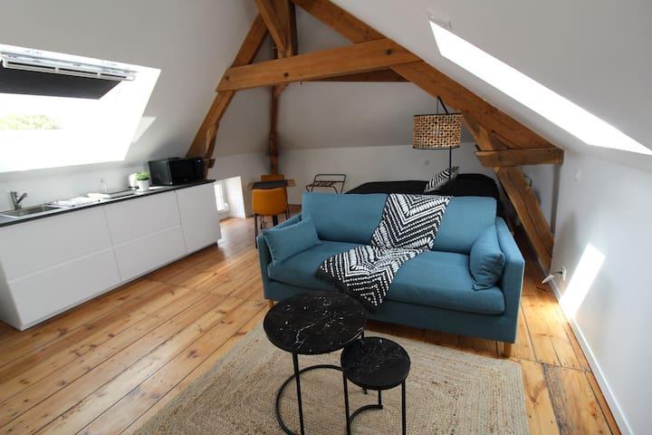 Loft atypique hyper centre La Roche sur Yon
