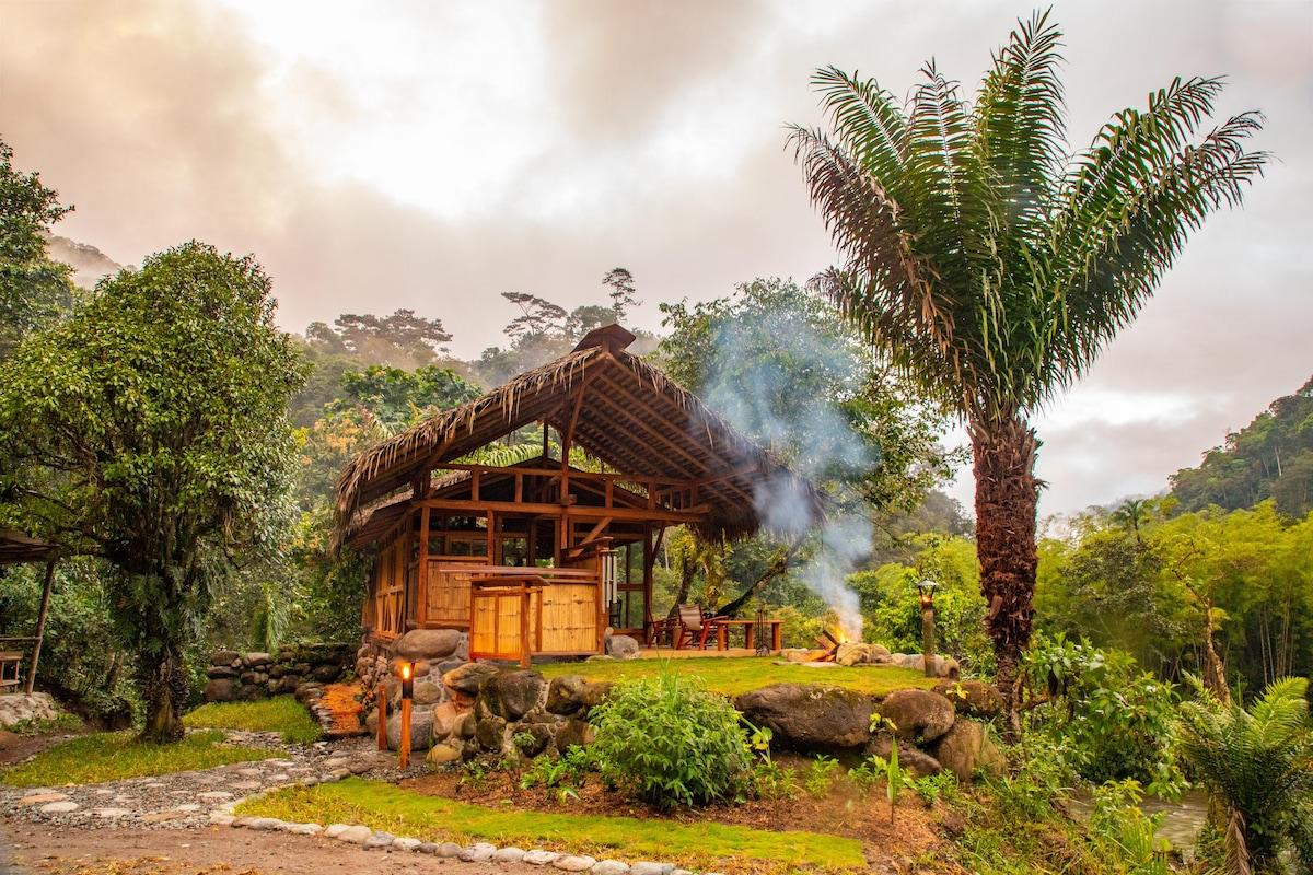 Remote Luxurious Riverside Jungle Retreat/Farmstay