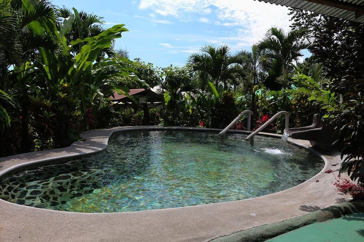 Arenal Experience & Hotsprings included