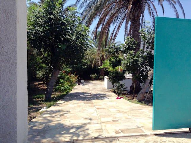 Naxos的民宿