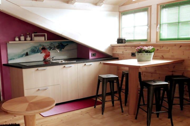 Stanza dello Sciatore con angolo cottura