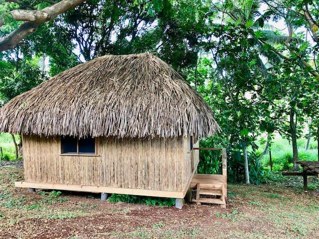 Nanduri的民宿