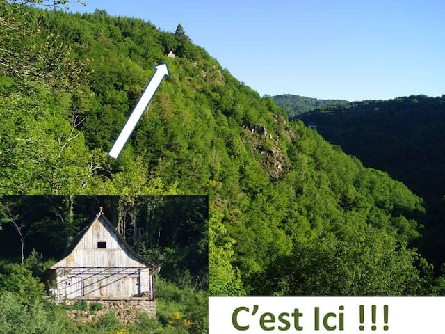 Saint-Geniez-ô-Merle的民宿